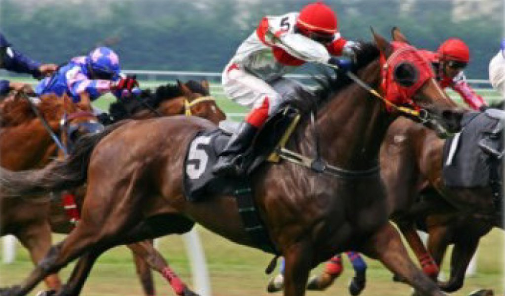 Corsa_cavalli
