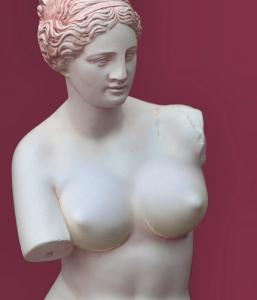 © Dan Cretu - Venus of Milo