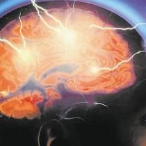cerebro1--644x362