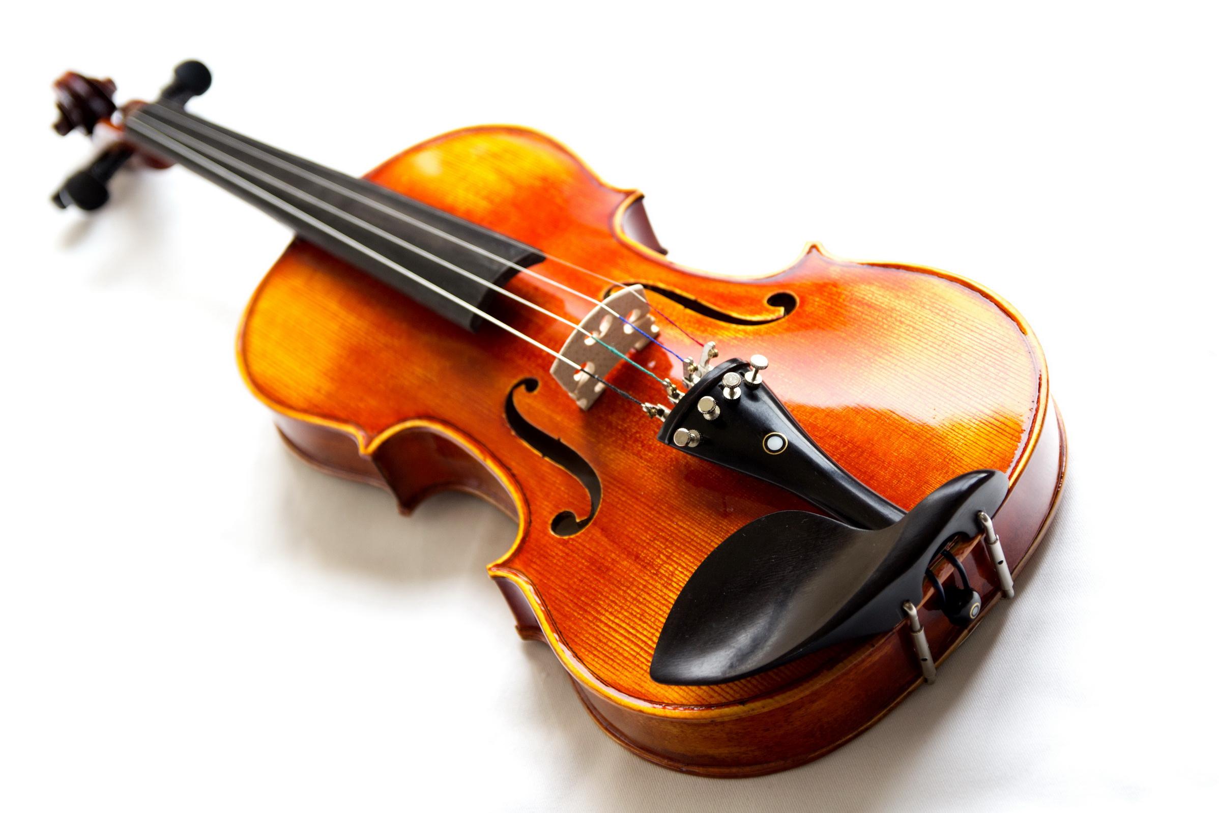 Risultati immagini per violino