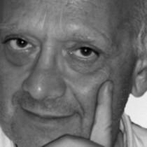 Valerio Negrini