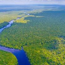 amazzonia ok