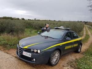 Allegato comunicato stampa Comando Provinciale Trapani